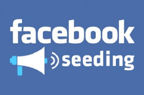 Seeding Facebook – Vũ khí cực hiểm để cưa đổ khách hàng