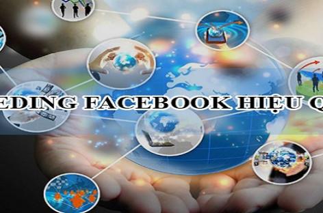 Những điều cần lưu ý khi áp dụng công cụ seeding facebook để đạt hiệu quả marketing tốt nhất